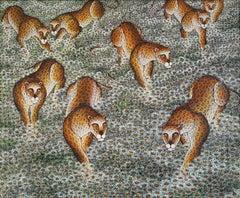 Leopard , Panther,  Jaguar  , Tropical Jungle Daisy Trail