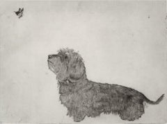 Guy Allen, Dachshund and Butterfly, Affordable Animal Art, Limited Edition Print