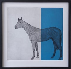 Guy Allen, Horse Study Blue, Bright Art, Etching Print, Contemporary Equine Art
