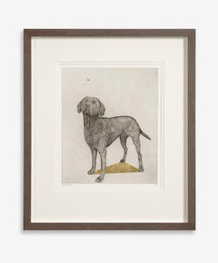 Guy Allen, Labrador and Bumblebee, Affordable Etching, Dog Art