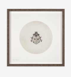 Guy Allen, Ladybird, Animal Etching, Affordable Art