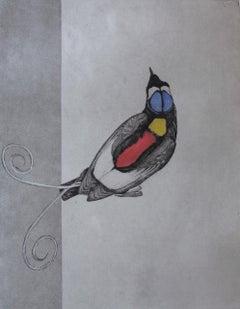 Guy Allen, Wilson's Bird of Paradise, Original Bird Art, Monochrome Art
