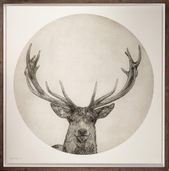 Moon Stag by Guy Allen.  Print from copper plate etching.  Unframed