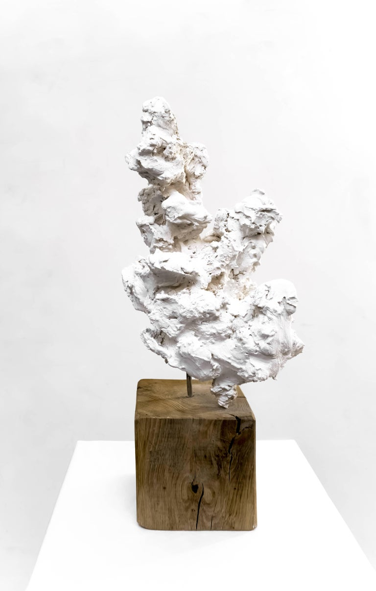 Guy Haddon Grant Abstract Sculpture - Cloud Studies no. 2