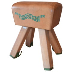 Gymnast Goat Pommel of Leather with Wooden Legs from Germany, circa 1960s