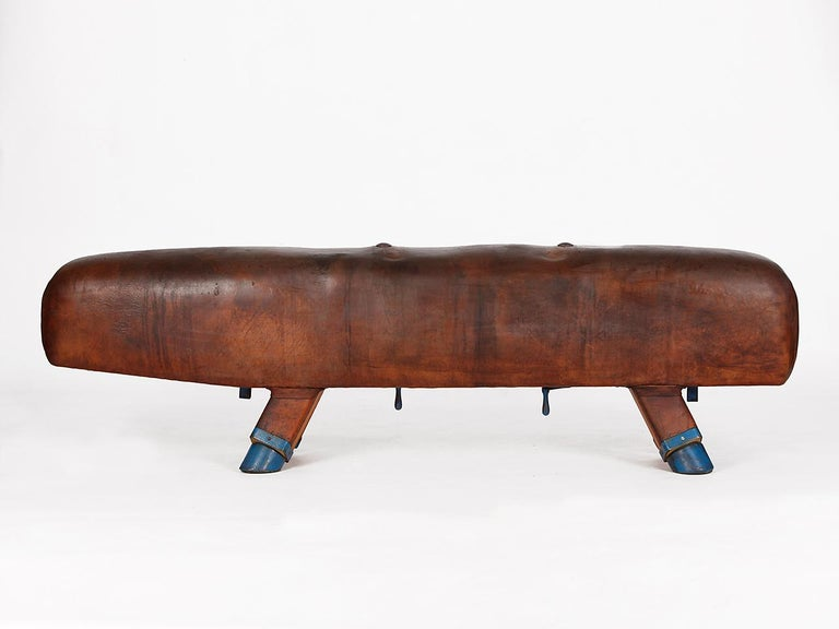 Gymnastic Leather Pommel Horse Bench, 1920s For Sale 5