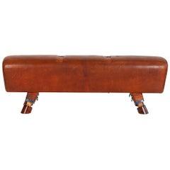 Gymnastic Leather Pommel Horse Bench, 1930s, Restored