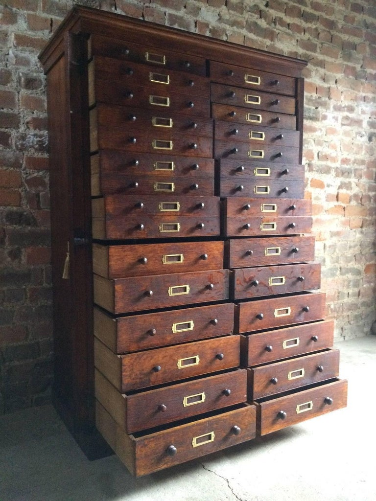 Haberdashery Chest Of Drawers Museum Cabinet Industrial