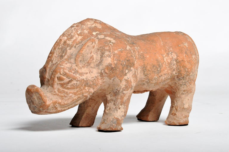 Chinese Han Dynasty Figure of a Pig For Sale