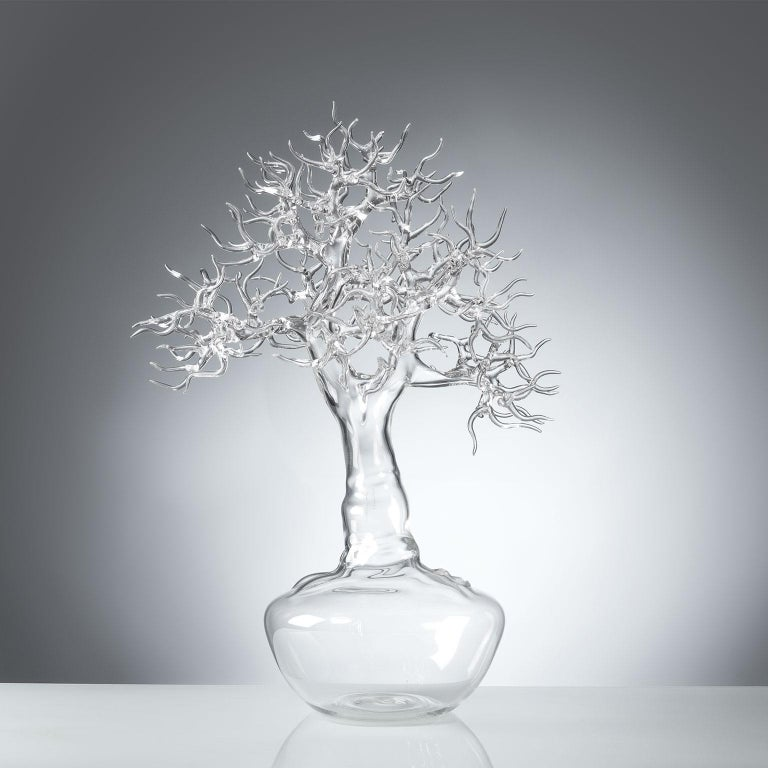"""Hand blown glass sculpture representing a bonsai tree.  Artist: Simone Crestani Material: borosilicate glass Technique: flame working Unique piece Year: 2017 Measures: Height 20.8"""", width 11.8"""", depth 14.3"""". Signed and dated on the trunk."""