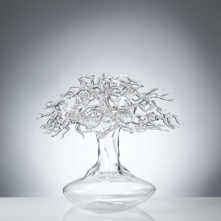 """Hand blown glass sculpture representing a bonsai tree.  Artist: Simone Crestani Material: Borosilicate glass Technique: Flame working Unique piece Year: 2017 Measures: Height 12.9"""", width 14.1"""", depth 15.7"""". Signed and dated on the trunk."""