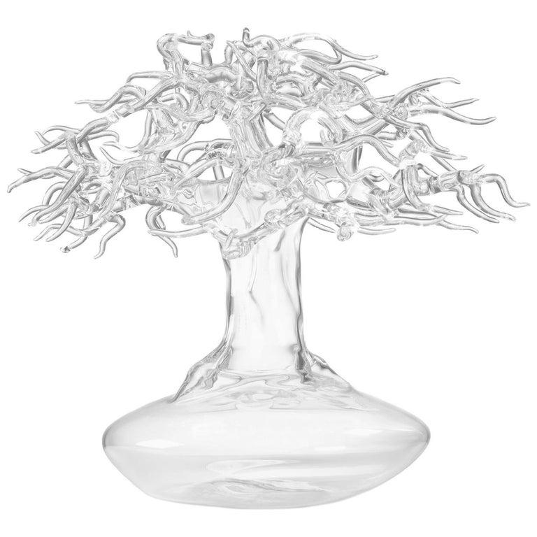 Hand Blown Glass Bonsai Sculpture 2017 #03 For Sale