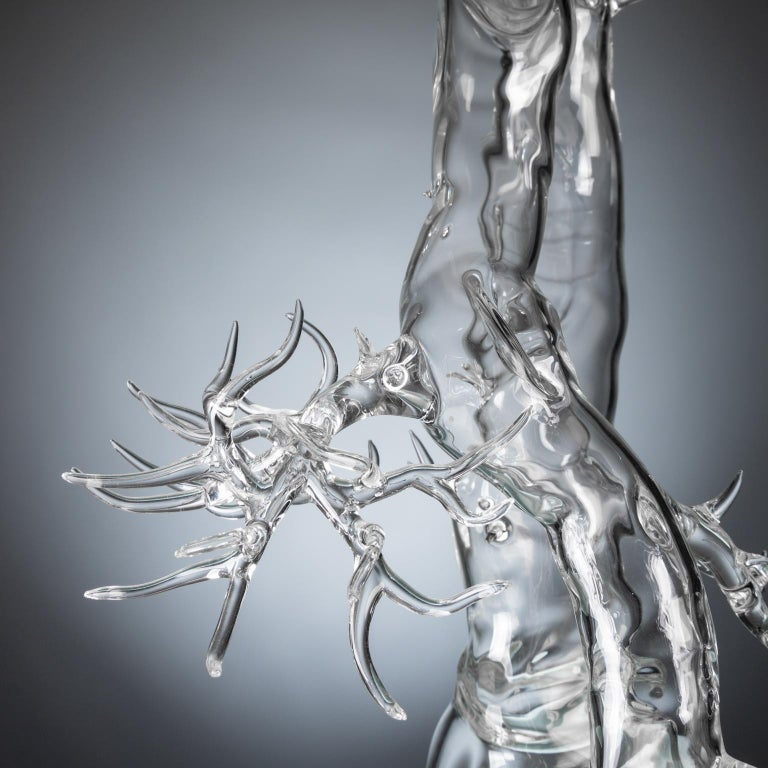 Contemporary Hand Blown Glass Bonsai Sculpture 2019 #01 For Sale
