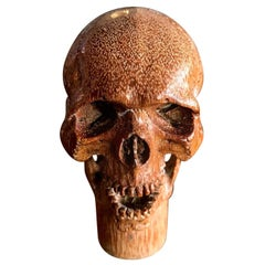 Hand Carved Wood Memento Mori Skull Cane Walking Stick Handle