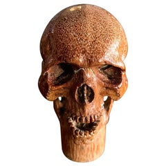 Hand Carved Wood Memento Mori Skull Cane Walking Stick Handle