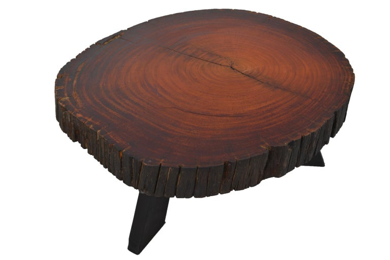 Solid tree trunk table made of a thick cross section of exotic wood. Top stands on 3 ebonized wooden legs.
