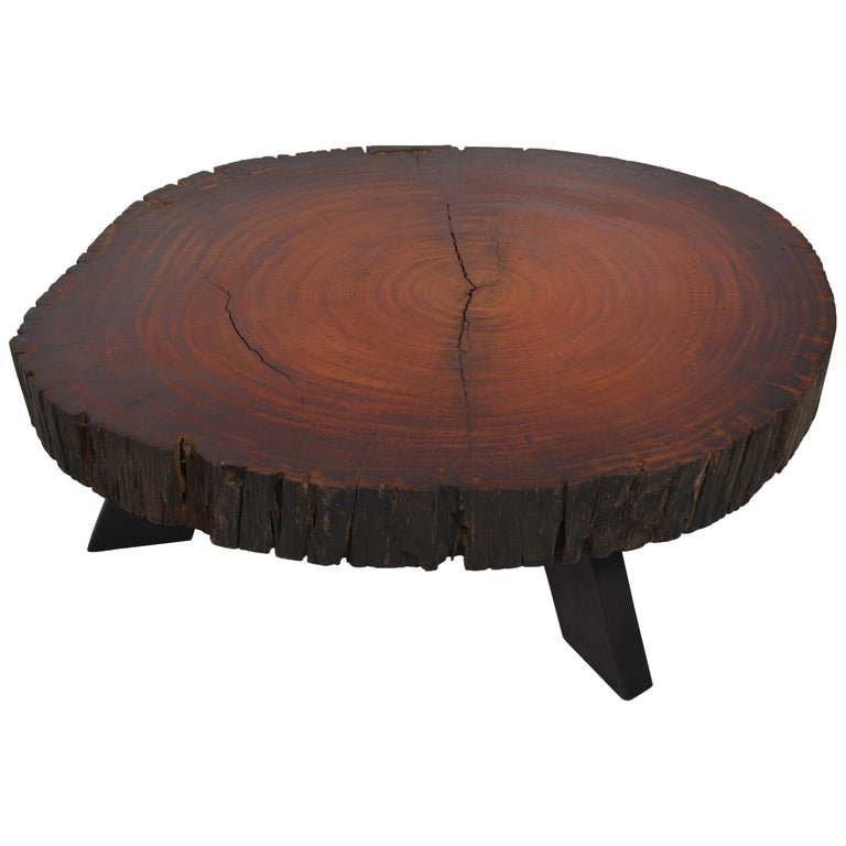 Handcrafted Belgian Tree Trunk Table For Sale