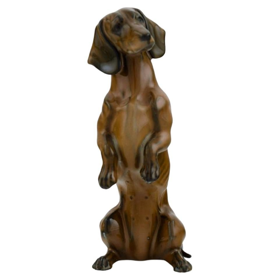 Hand-Painted Rosenthal Porcelain Figurine, Standing Dachshund, Mid-20th Century