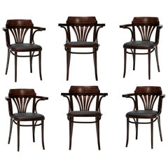 Handcrafted Bent Cane Dining Armchairs in High Quality Leather