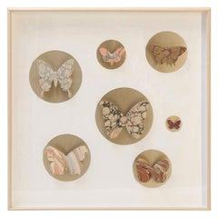 Handcut Paper Butterfly Box