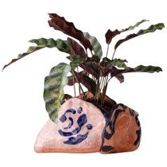 Handmade Terracotta Tulip Pot Unique Edition