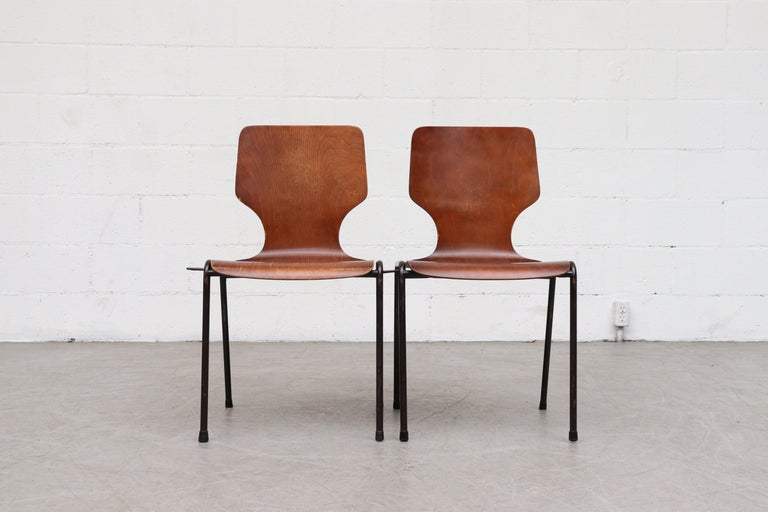 Mid-Century Modern Handsome Fritz Hansen Style Wingback Stacking Dining Chairs For Sale