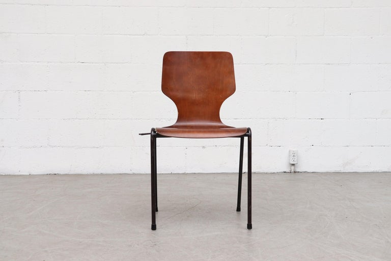Enameled Handsome Fritz Hansen Style Wingback Stacking Dining Chairs For Sale