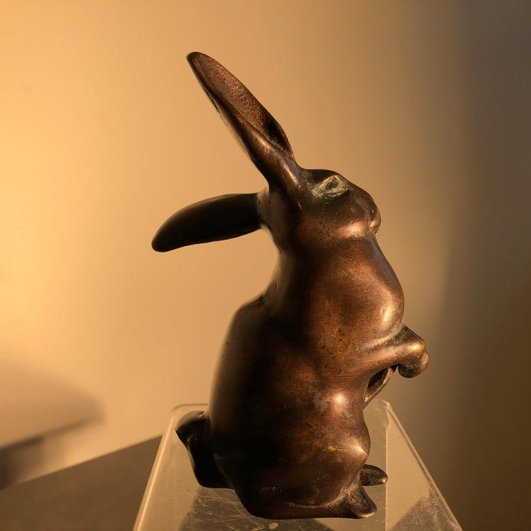 Handsome Tall Big Ears Chocolate Bronze Rabbit, Japanese Fine Details For Sale 6