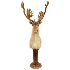 Handsome Vintage Reindeer Head on Stand-France