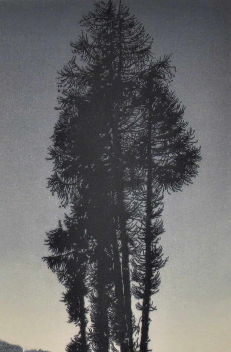 Winter Landscape - Gray Landscape Print by Hans Figura