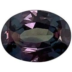 HARBOR D. Oval Shape Alexandrite Loose Stone 1.57 Carat