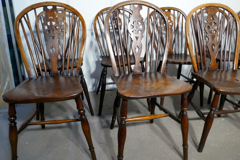 Harlequin set of 10 Victorian beech and elm wheel back Windsor kitchen dining chairs.