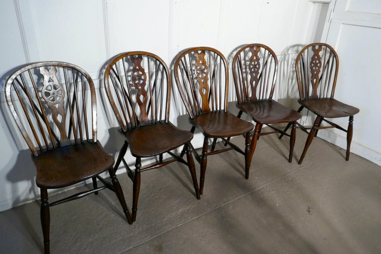 Harlequin Set of 10 Victorian Beech and Elm Wheel Back Windsor Dining Chairs 1