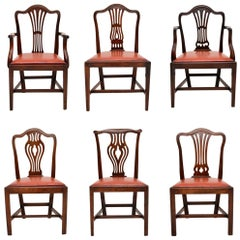 Harlequin Set of 6 Antique Georgian Mahogany Dining Chairs