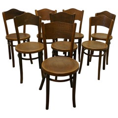 Harlequin Set of 8 French Bistro or Cafe Bentwood Chairs