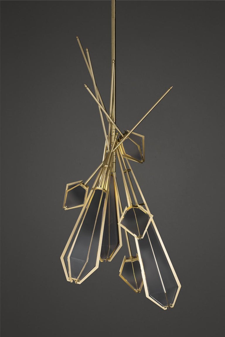 Harlow dried flowers is an elegant sculptural light fixture inspired by jewelry design featuring a mold-blown glass gem in a chic metallic setting to create an asymmetrical starburst of light. Harlow is available in various color ways, and held in a