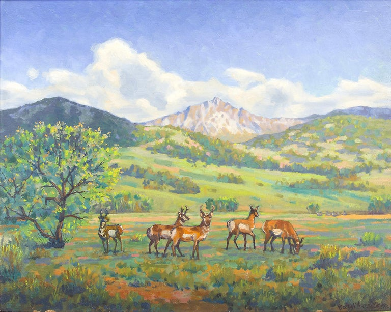 Antelope (Colorado Mountain Landscape) - Painting by Harold Vincent Skene