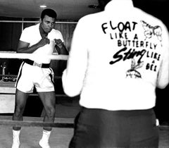 Float Like A Butterfly, Sting Like A Bee: Muhammad Ali, Miami