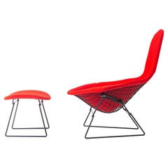 Harry Bertoia Bird Chair in Black with Original Knoll Cover