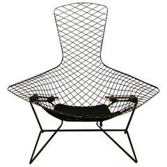 Harry Bertoia, Knoll International, Bird Chair in Black, 1952