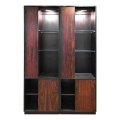 "Harvey Probber ""Trophy Cabinet"" in Mahogany and Brazilian Rosewood, 1950s"