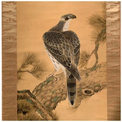 Hawk on Pine, Japanese Hanging Scroll Painting by Shunsen, Meiji Period, Japan