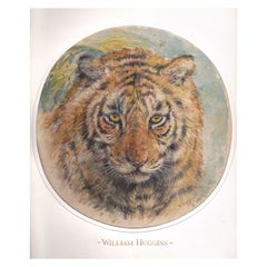 Head of a Tiger Attributed to William Huggins '1820-1875'