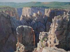 Black Canyon 1 (Western Colorado, steep-walled gorge, muti-colored rock, lush)