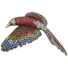 Heidi Daus Tropical Parrot Bird Statement Pin Brooch, Large