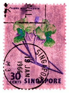 Singapore Stamp Collection, 30c Singapore Orchid Pink - Floral color photo