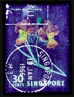 Singapore Stamp Collection, 30c Singapore Orchid Purple - Floral color photo