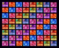Singapore Stamp Collection, Singapore Ship Sequence (8x8) - Pop art color photo