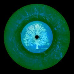 Vinyl Collection, LTD. ED. VINYL (Summer) - Conceptual Pop Art Color Photography