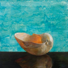 Aqua Bailer Shell - Single Bailer Sea Shell on Brown Table w/ Watered Backdrop